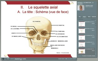 Cours_E-learning_Ifits